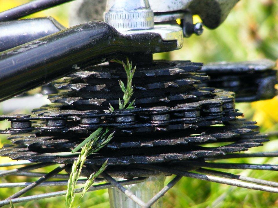foto catena bicicletta