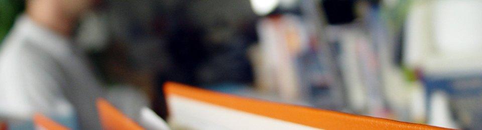 foto raccoglitori arancioni