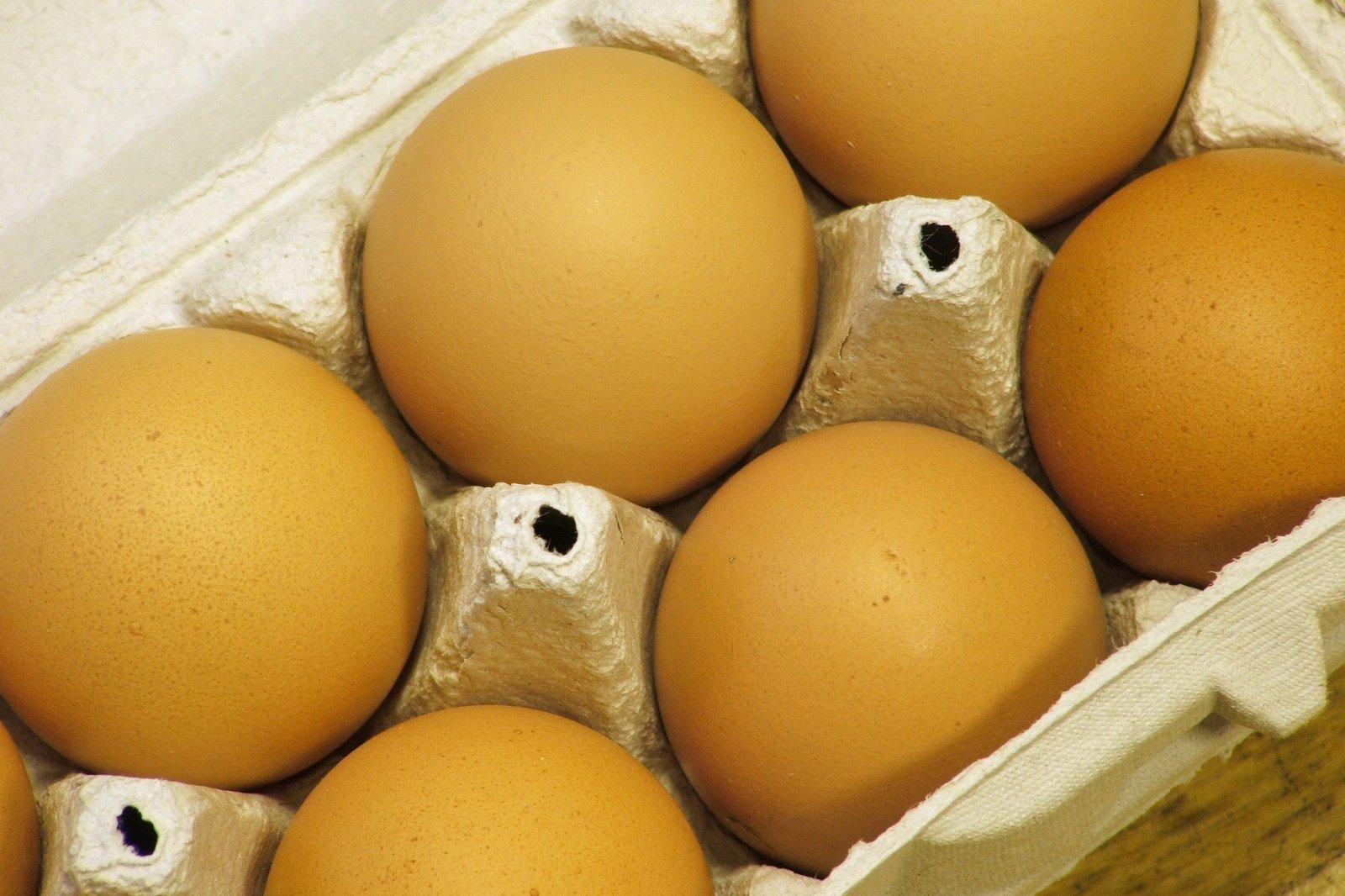 foto confezione 6 uova